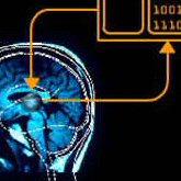 NeuroBionics T2