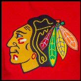 Hawk Logo_JAJ0561